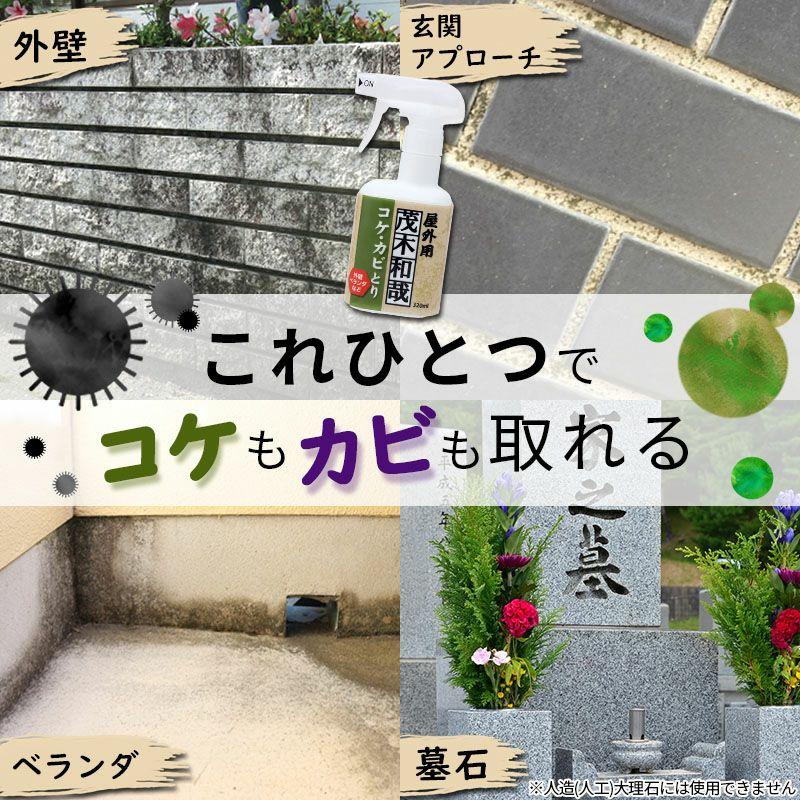 茂木和哉 コケ・カビ取りスプレー 320ml