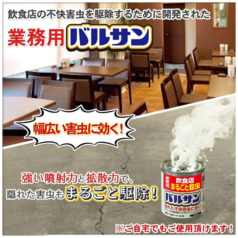 業務用バルサン 飲食店 まるごと殺虫 20~26平米用 1個