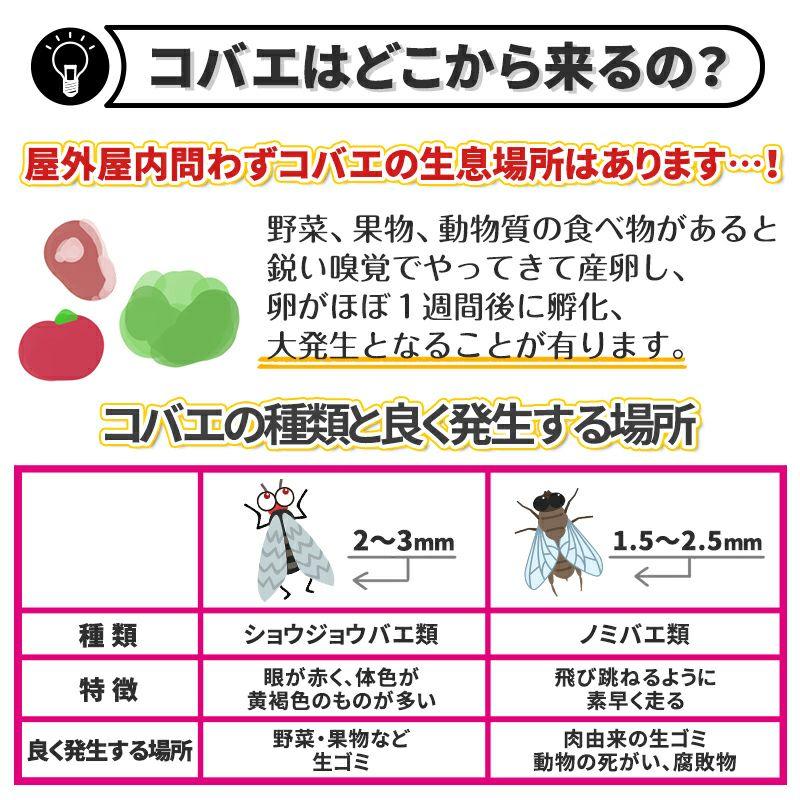 バルサン コバエ直撃ワンプッシュ(無香)